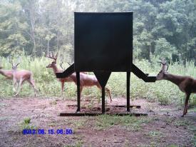Tube Bucks (8-15-2012)