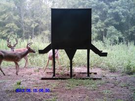 Drop Tine (8-15-2012)
