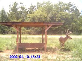 Buck (1-10-2012)